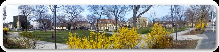Dieses Panoramabild zeigt ein Frühlingshafter Tag am Zedtwitzpark in Ludwigshafen-Mundenheim.