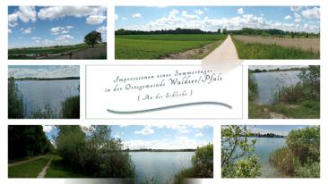 Impressionen aus Waldsee-Pfalz