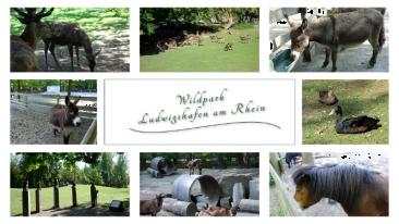myBild85 - Impressionen vom Wildpark in Ludwigshafen am Rhein
